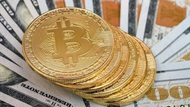 The Introduction To Bitcoin